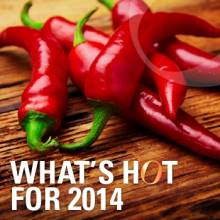 What's HOT for 2014?
